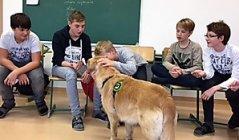 therapiehund11.jpg